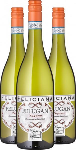 2020 Felugan Lugana, DOP, Feliciana - 3er-Paket